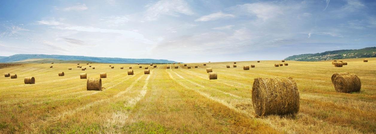Farming-Slider